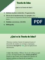 Teoriaislas.pdf