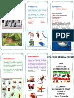 Triptico - Animales Vertebrados e Invertebrados