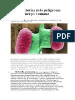 Las 7 Bacterias Más Peligrosas Para El Cuerpo Humano