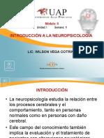 Introducción a La Neuropsicología