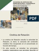 cineticadeflotacion.pdf