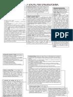 esquema del proceso penal.pdf