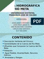 90732990-CUENCA-HIDROGRAFICA-RIO-META.pptx