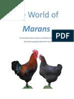 the world of marans