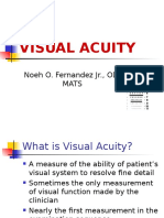 Lecture 2 Visual Acuity