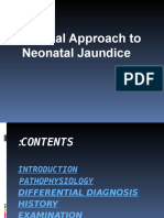 Clinical Approach to Neonatal Jaundice