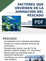 Expo de Pescados2