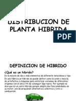 planta hibrida