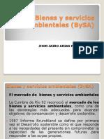 bienesyserviciosambientales-bysa-efectos.pdf
