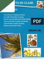 Presentacion Aceite de Palma Terminado, aceite extraido de la palma africana
