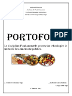 referat fundamente.pdf