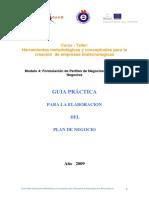 Guia Practica Plan de Negocios BiotecSur