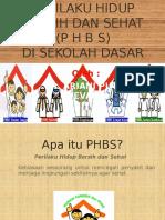 PHBS SD, APD