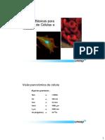 2TecBasicasemBioCel.pdf