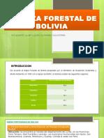 Riqueza Forestal de Bolivia