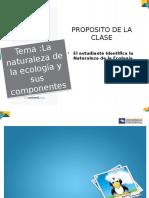La Naturaleza de La Ecologia y Sus Componentes