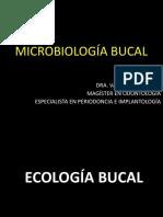 MICROBIOLOGÍA BUCAL