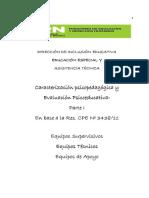 Caracterización y Evaluación Psp I