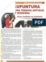 acupuntura veterinaria