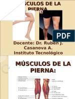 45.- Músculos de La Pierna