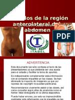 38.-Musculos Del Abdomen