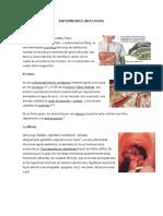 ENFERMEADES INFECIOSAS Y PARASITARIAS.docx