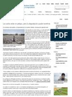 FAO -Noticias_Los Suelos Están en Peligro, Pero La Degradación Puede Revertirse