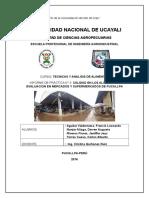 INFORME SOBRE CALIDAD DE ALIMENTOS.docx