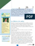 ficha fdn.pdf