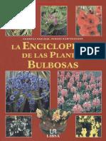 La Enciclopedia de Las Plantas Bulbosas Van Dijk Hanneke