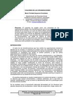 COACHING EN LAS ORGANIZACIONES.pdf