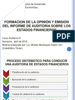 Informes Del Auditor (Dictámenes) Versión 2016 (1)