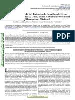 224-2019-2-PB (1).pdf