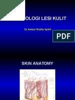 244828665-Morfologi-Lesi-Kulit-KKD-ppt.ppt