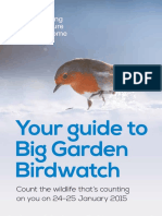 Big Garden Birdwatch Guide