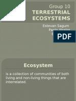 10-Terrestrial Ecosystem.pptx