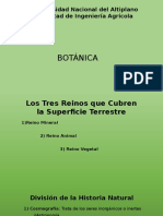 Botánica, Raíz 2015-I.pptx
