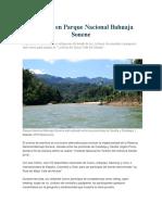 Aventura en Parque Nacional Bahuaja Sonene