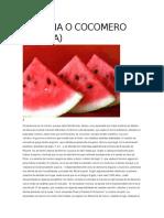 Anguria o Cocomero