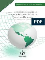 Los Procedimientos Ante La Comision Interamericana de Derechos Humanos