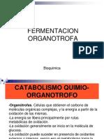 8.- Fermentacion Organotrofa (1)