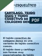 6 Clase Tejido Oseo y Cartc3adlago