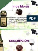 exposicion-licor-mora-1193960482270500-5.ppt