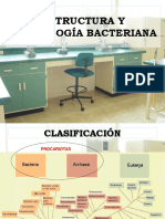Morfologia Bacteriana Clase II-1 (2)