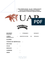 TRABAJO DE IDENTIFICACION DE RIESGOS AMBIENTALES.doc
