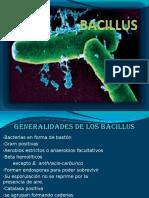 Bacillus Bacterio II 2011 10 (1)