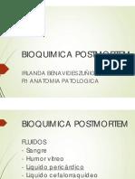 Liq Pericradico Postmortem