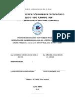 Informe Final Vino Mucílago Cacao