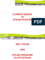 Presentation Common Issues in Steam Systems