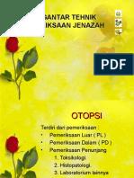 Ok Autopsi 7